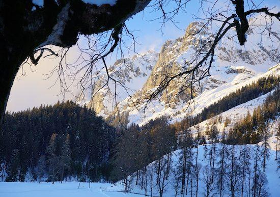 Winter_Home_Slideshow_5