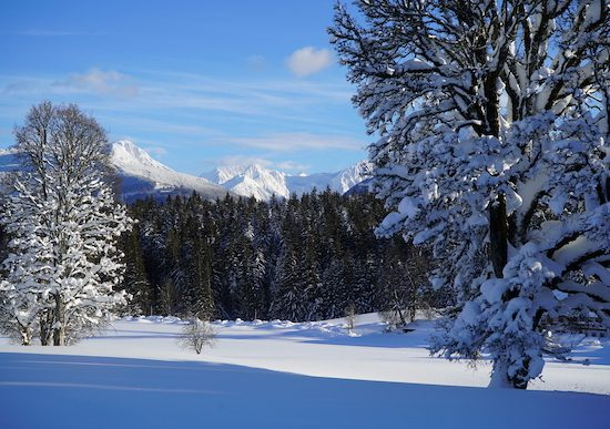 Winter_Home_Slideshow_8